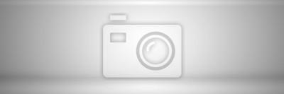 Fototapeta rozmycie streszczenie szarym tle