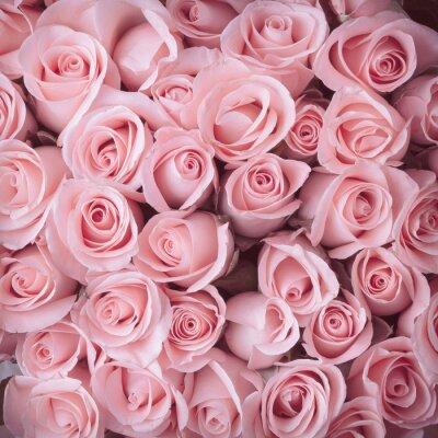 Fototapeta różowa róża bukiet kwiatów rocznika tle