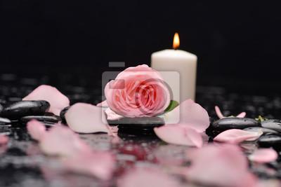 Różowa róża, płatki ze świecą i kamienie terapeutyczne czarne tło