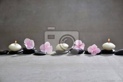 Różowi hortensja płatki z czarnymi kamieniami i trzy świeczkami na popielatym tle