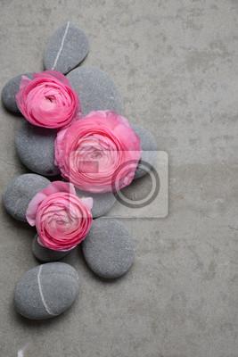 Różowy trzy różowy kwiat z szarymi kamieniami na szarym tle