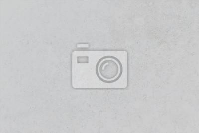 Fototapeta Rustykalne, szorstki szary tło.