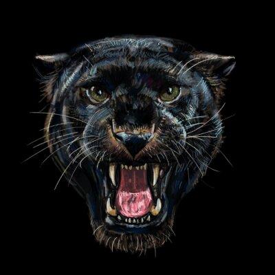 Fototapeta Rycząca czarna pantera na czarnym tle