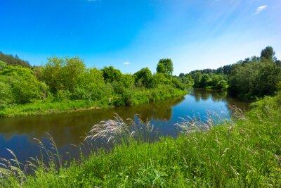 Fototapeta Rzeka w krajobrazie leśnym