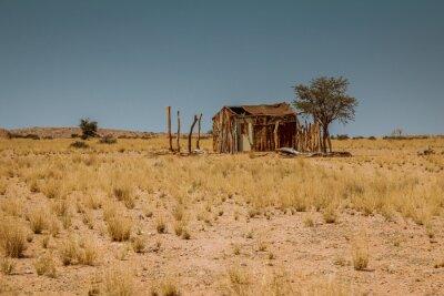 Fototapeta Safari w Afryce