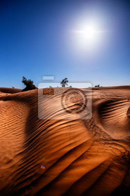 Sahara, Maroko, Afryka