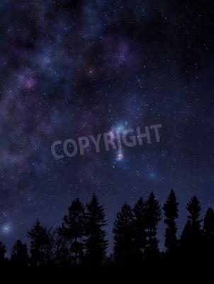 Fototapeta Scena nocy z lasu i jasne rozgwieżdżone niebo nad