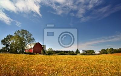 Fototapeta Scenic krajobraz Farm