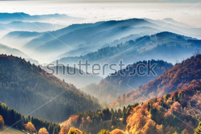 Fototapeta Scenic mountain landscape. View on the Black Forest, Germany, covered in fog. Colorful travel background.