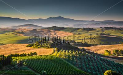 Fototapeta Sceniczny Toskania krajobraz z tocznymi wzgórzami i dolinami w złotym ranku światła, Val d'Orcia, Włochy