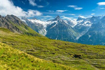 Fototapeta Schreckhorn w szwajcarskich Alpach