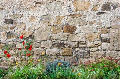 Fototapeta Ściana zamku ogród kwiaty
