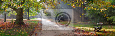 Fototapeta Ścieżka w parku jesienią. Krajobraz jesienny.