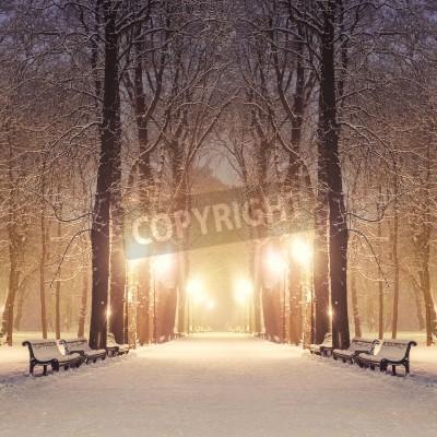 Fototapeta Ścieżka w parku miejskim wspaniały zimowy