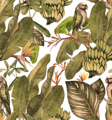 Fototapeta Seamless watercolor pattern with hibiscus, palm leaves, branch of strelitzia, calathea, parrot.Tropic background