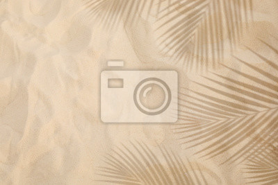 Fototapeta Selective focus of summer and holiday  backgrounds concepts with shadow of coconut leaf on clean sand beach
