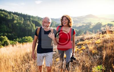 Fototapeta Senior tourist couple travellers hiking in nature, walking and talking.