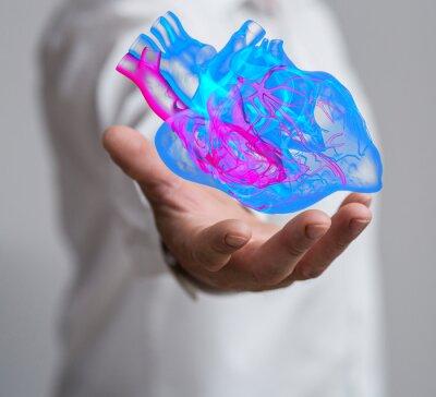 Fototapeta serce