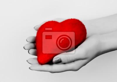Fototapeta Serce w dłoni