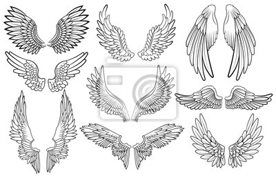 Fototapeta Set of angel wings. Wings collection with feathers. Black white vector illustration. Tattoo.