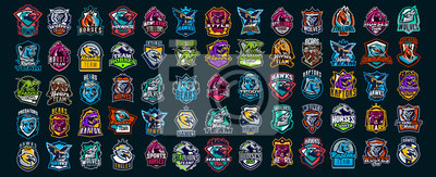 Fototapeta Set of animal emblems. Bear, dinosaur, eagle, leopard, wolf, horse, fox, lion, grizzly, raptor, hawk, jaguar, cat, lynx, leo, stallion, birds. Sports mascots, colorful collection, vector illustration