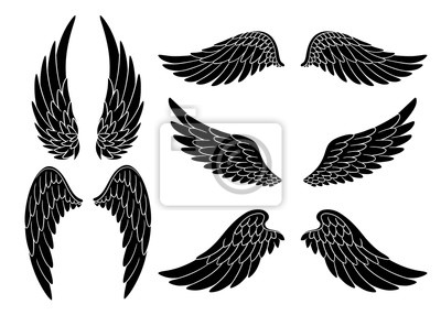 Fototapeta Set of hand drawn bird or angel wings of different shape in open position. Black doodle wings set