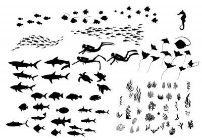 Fototapeta Set of sea wildlife