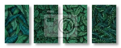 Fototapeta Set of tropical leaves background