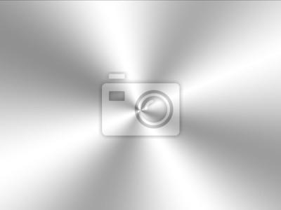 Fototapeta Silver Brushed metal background