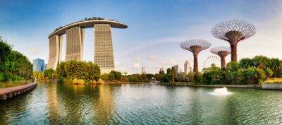 Fototapeta SINGAPORE - FEBRUARY 27, 2019: Singapore Super tree garden in Marina bay at day, nobody