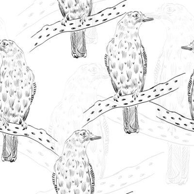 Fototapeta sketch of bird