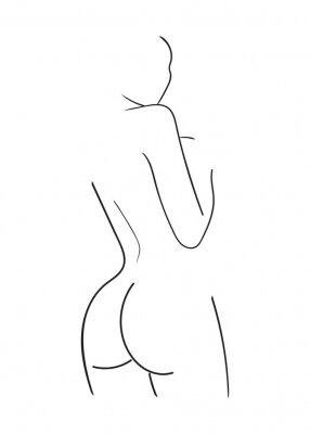Fototapeta Sketch of woman body. Line art. Vector Illustration