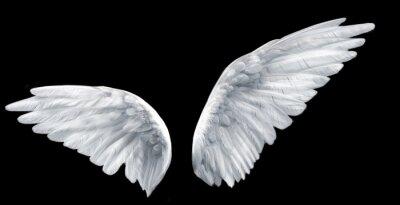 Fototapeta skrzydła anioła