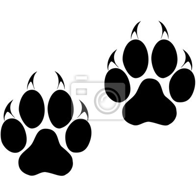 Fototapeta Ślady wielkiego kota. Panther i Tiger ślady. Wektor ESP10