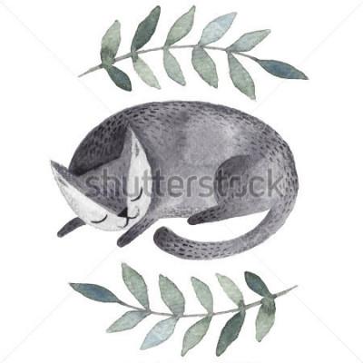 Fototapeta Śliczny szary sypialny kot. Akwarela żartuje ilustrację z zwierze domowy. Śpiące piękne zwierzątko. Ręcznie wykonana ilustracja na karty podarunkowe, kartki pocztowe, kartki z życzeniami, t-sh