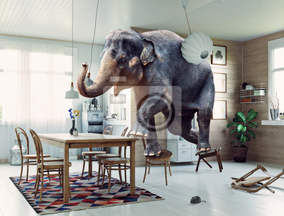 Fototapeta słoń i mysz