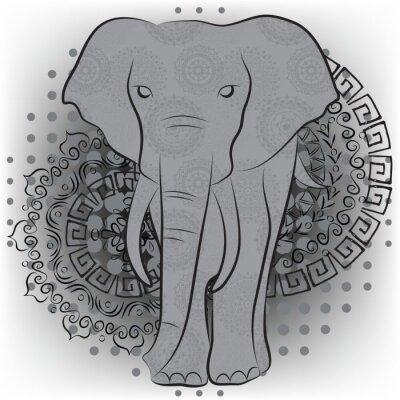 Fototapeta Słoń z wzorami i mandale