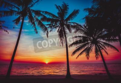 Fototapeta słońca tropikalnej plaży.