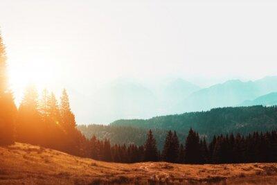 Fototapeta Słońce wschodzące nad mglistym krajobrazem górskim