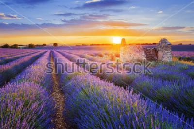 Fototapeta Słońce zachodzi nad piękną purpurową lawendą złożoną w Valensole. Provence, Francja
