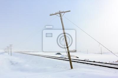 Słupy telegraficzne w snowy i mglisty dzień z bardzo miękkiej atmosferze na wsi w prowincji Mus.