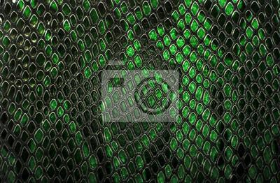 Fototapeta Snake skin background