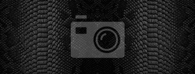 Fototapeta Snake skin background. Panoramic web banner with copy space.