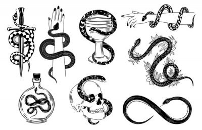 Fototapeta Snakes tattoo. Occult snake wrapped around hand, skull, dagger, bowl and poison. Serpent silhouette in flowers. Mystical tattoos vector set