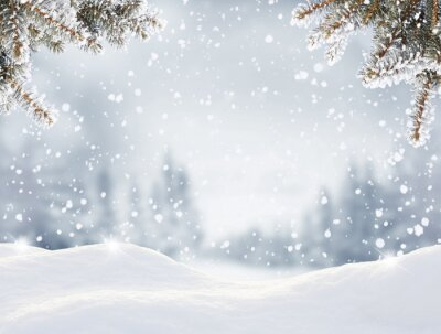 Fototapeta Snowfall in winter forest.Beautiful landscape with snow covered fir trees and snowdrifts.Merry Christmas and happy New Year greeting background with copy-space.Winter fairytale.