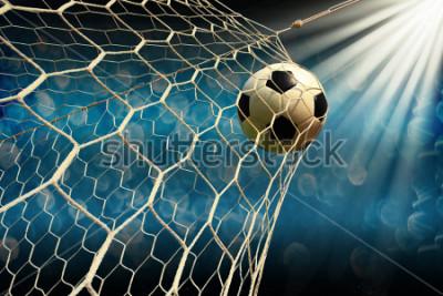 Fototapeta soccer field with a ball in goal