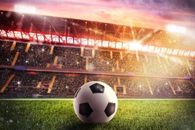 Fototapeta Soccerball na stadionie