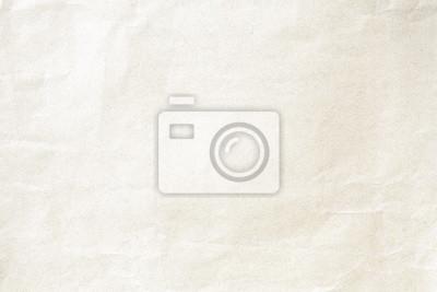 Fototapeta Soft brown crumpled winkle detail background paper texture