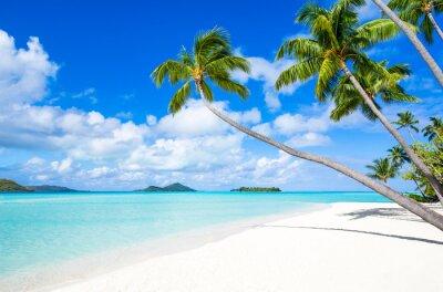 Fototapeta Sommer, piasek i plaża na wyspie Insel