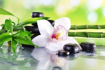 Fototapeta Spa kamienie, gałęzie i bambusa biała orchidea